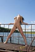 Donna nuda sulla diga. — Foto Stock