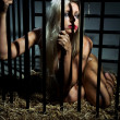 Stock Photo: Bondage art style with beautiful nude slave girl locked in cage