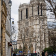 Notre-Dame Cathedral. Paris, France — Stock Photo #8519652